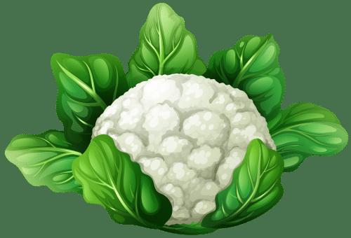 Cauliflower_PNG_Clip_Art-1490